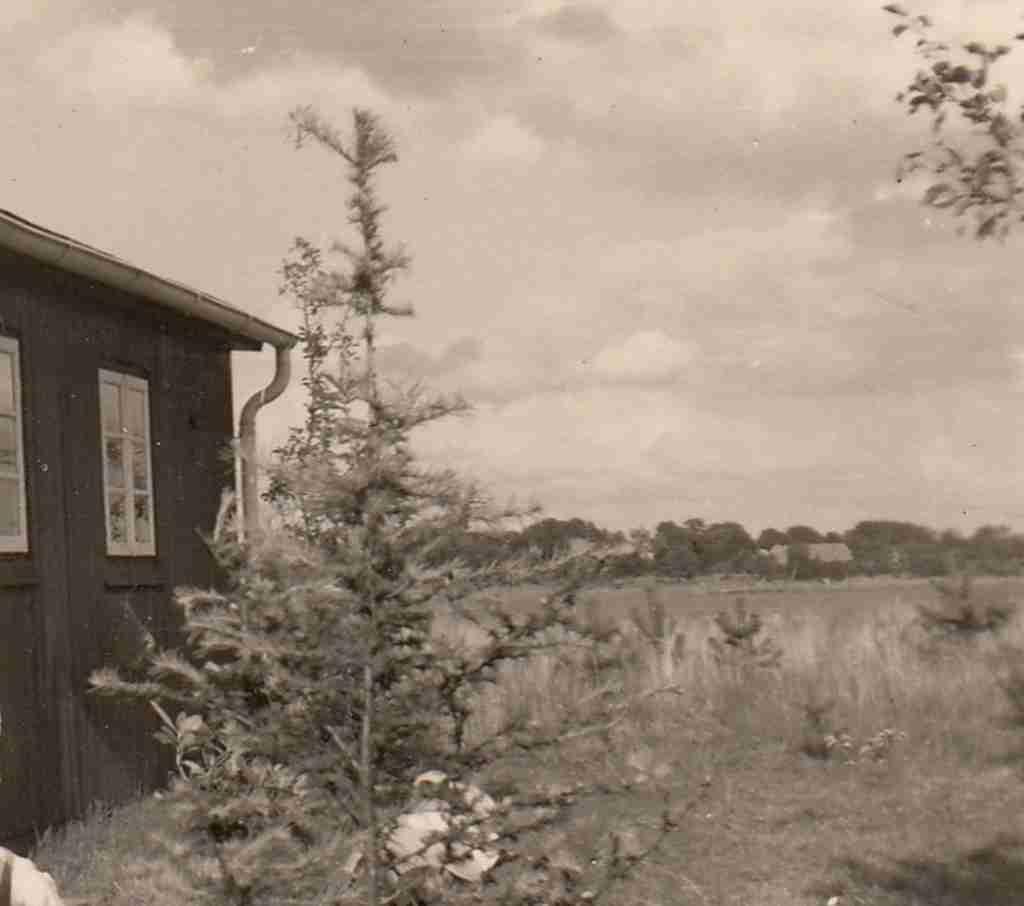 1958_05_25 Hüttenbusch detail