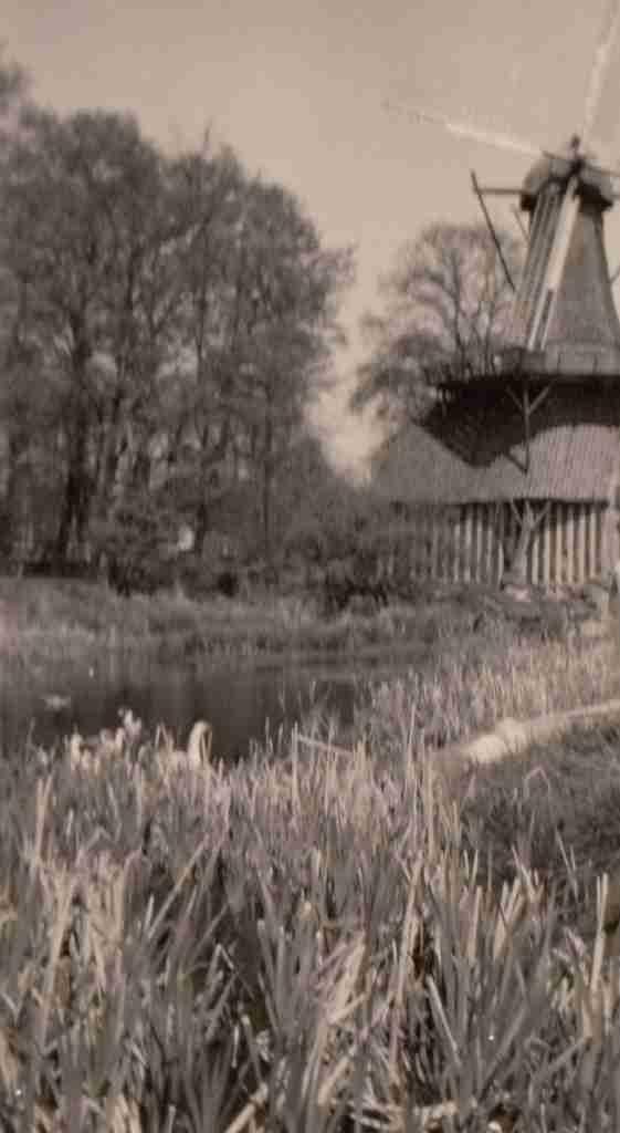 1959_05_07 Hümmling Hüvener Mühle detail