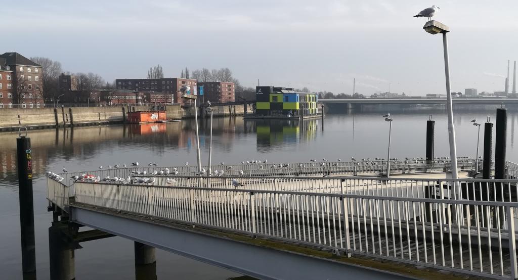 2021_01_23 Müggenburger Zollhafen vom Ballin-Park aus