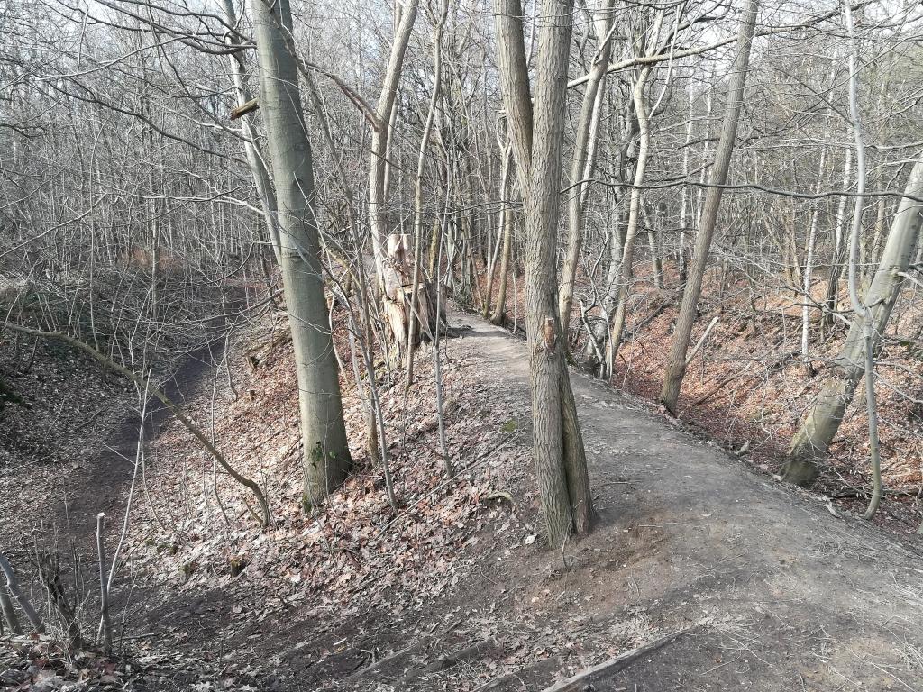 2021_02_20 Heimfelder Holz