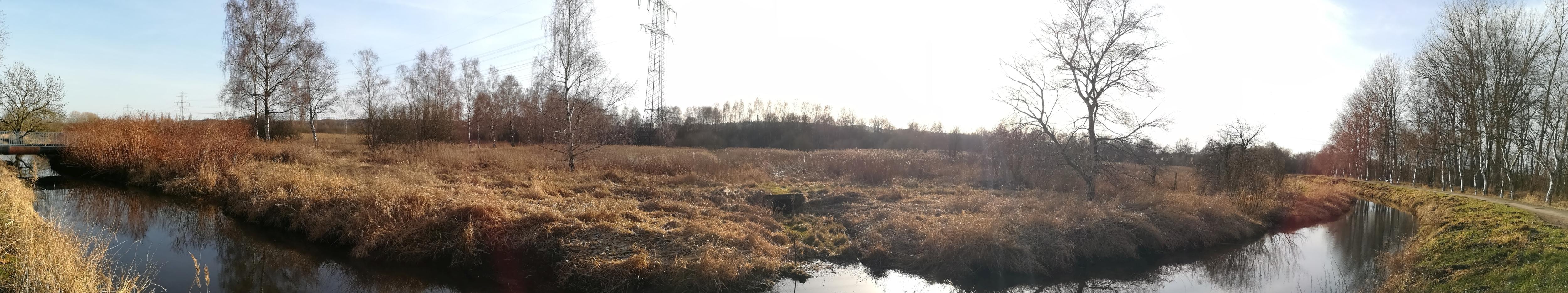2021_02_20 Moorburg, Moorburger Landscheide