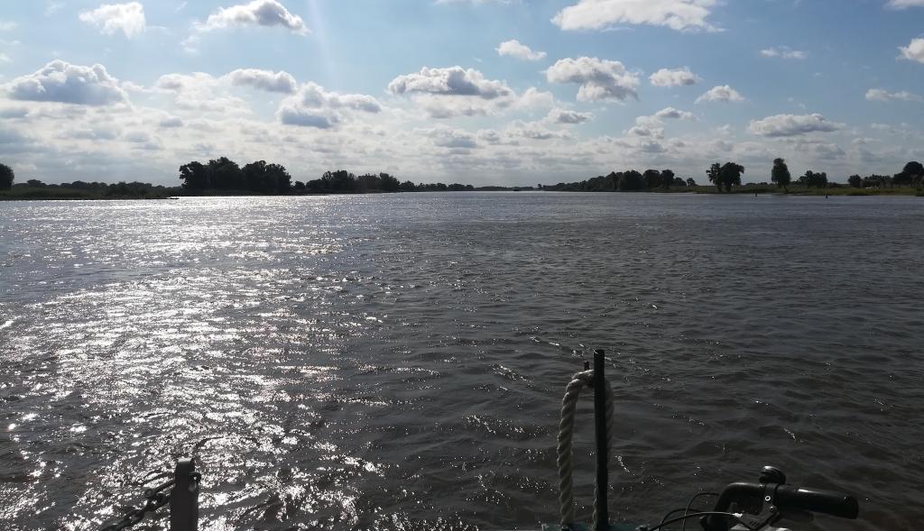2021_07_31 Elbaufwärts bei Hitzacker