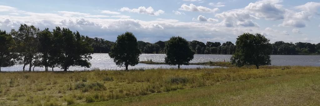 2021_07_31 Elbe bei Wilkenstorf