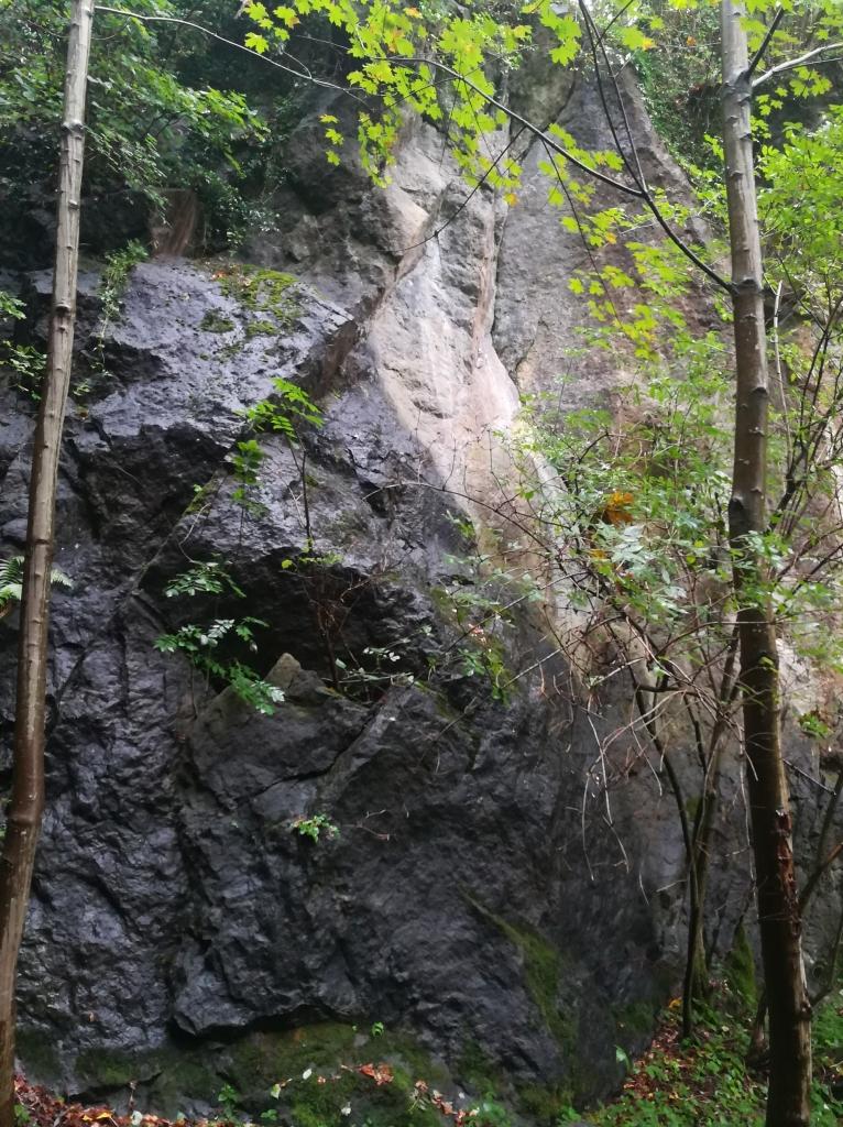 2021_09_20 Neubeuern Geotop Geiger Hölzl