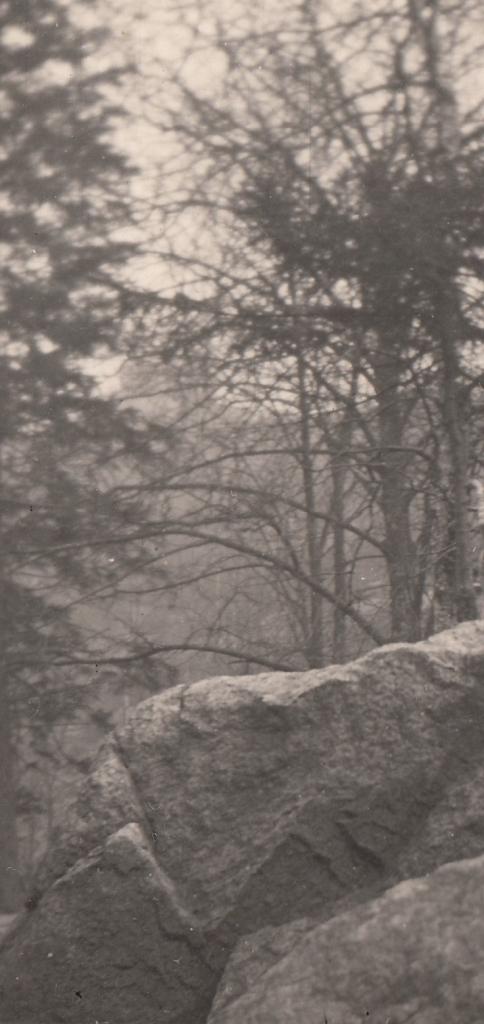 1956_04 - Harz Bode- oder Okertal detail